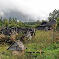 Эпоха вымирания: выживет ли нижегородское село?
