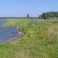В Нижнем Новгороде девочка утонула в Силикатном озере