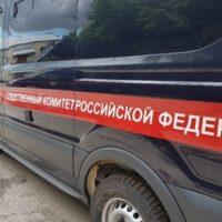 В Нижнем Новгороде убили и сожгли беременную девушку