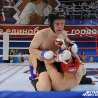 Всероссийский турнир по смешанным единоборствам пройдет в Балахне