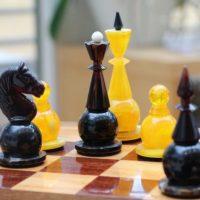 Нижегородка завоевала золотую медаль на Первенстве России по шахматам