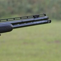 200 нарушений правил охоты выявлено в Нижегородской области