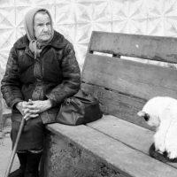 «Дальняя родственница» похитила у пенсионерки 150 тыс. рублей