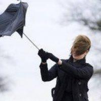 МЧС: в Нижегородской области ожидается сильный ветер