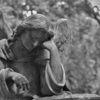 В Городце директор кладбища незаконно бронировал места для захоронений