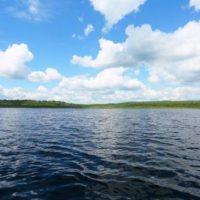Тело мужчины извлекли из озера Лунское в Сормовском районе