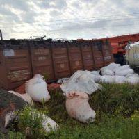 В Нижегородской области после схода вагонов возбуждено уголовное дело
