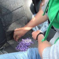 Девочки-подростки из Нижнего Новгорода попались на сбыте наркотиков