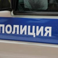 Школьница погибла в ДТП на автодороге Нижний Новгород — Саратов