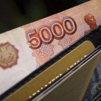 В Нижнем Новгороде бухгалтера фирмы обвинили в хищении 2 млн рублей